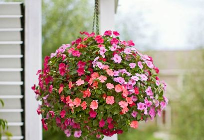 hanging-baskets-101063531-04